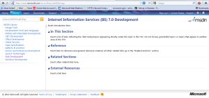 IIS documentation blank template
