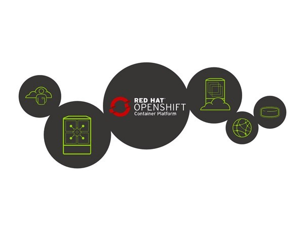 How to use wildcard domain with OpenShift hosting?